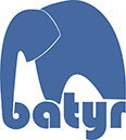 Batyr Logo